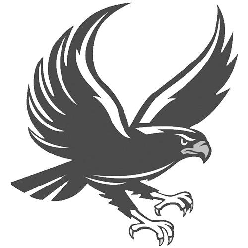 Hunter Jr Hawk Logo