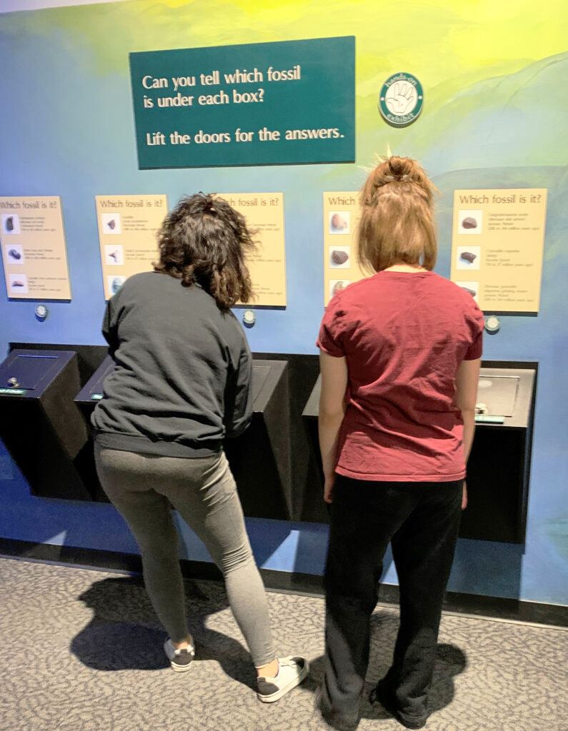 DSI/Gemstone students looking at an interactive exhibit on fossils at the Museum of Ancient Life at Thanksgiving Point in Lehi, UT